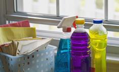 В стиле эко: чем заменить домашнюю химию