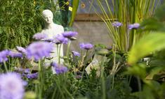 Сад в природном стиле: основные приемы