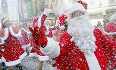 В Самару из Лапландии приедет Санта-Клаус