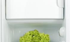 15 средств от запаха в холодильнике