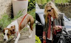 Кейт Мосс изменила имидж ради собаки