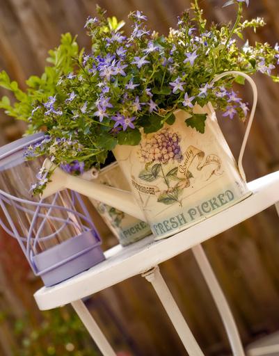 модный сад, ландшафтный дизайн, садовые тенденции, 2011, дачный участок, модные тренды