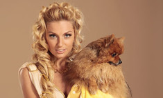Русские звезды защитили бездомных животных