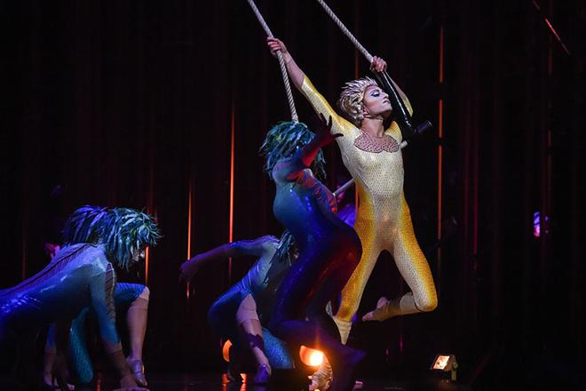 Секс с цирковыми артистами