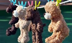 Лайфхаки: как правильно стирать мягкие игрушки