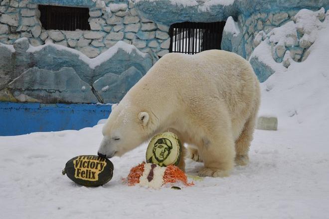 Медведь Феликс получил торт в виде Дональда Трампа