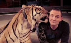 Запашный пострадал от тигрицы на съемках сериала