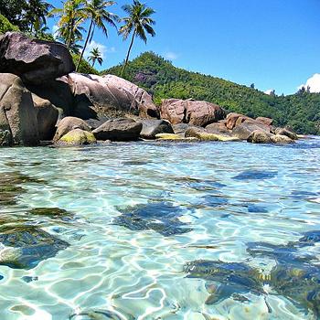 Пляжи Анс-Форбанс и Анс-Рояль хорошо защищены коралловым рифом, там можно отлично поплавать с маской и трубкой. Но одним из самых красивых пляжей на Сейшелах считается пляж Анс-Интенданс — пятисотметровая дуга, окаймленная кокосовыми пальмами.