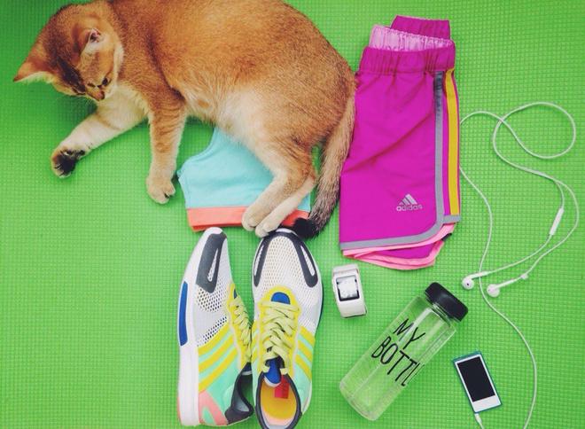одежда для занятий спортом фото