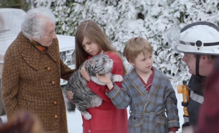 Рождественская реклама с котом стала хитом Интернета, видео смотреть