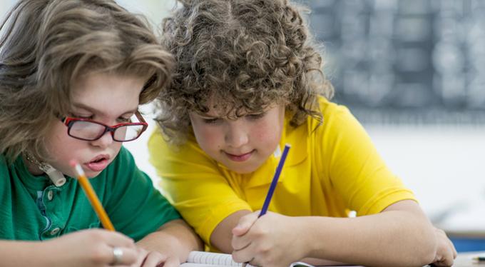 Особый ребенок в классе: проблема или удача?