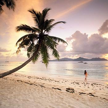 Благодаря своим роскошным видам, Сейшелы пользуются бешеной популярностью у молодоженов. Отличный сервис, фантастические закаты, эксклюзивный пляжный отдых превращают острова в рай на земле... К сожалению, только для весьма состоятельных туристов.