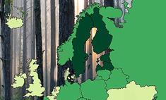 карта процентов территории занимают леса странах европы россии