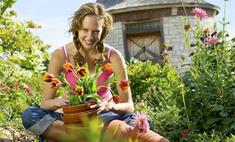 Инструкция: как защитить грядки от сорняков