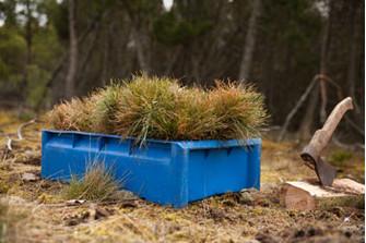 С вашей помощью мы посадили уже около 600 деревьев. Но этого пока мало для восстановления леса