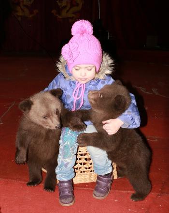 дрессировщики медведей