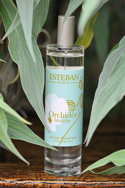 новые ароматы, аромат любви, цветочные ароматы, цитрусовые ароматы, пряный аромат, свежие ароматы, сладкие ароматы