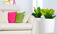 10 советов, как создать уют в съемной квартире