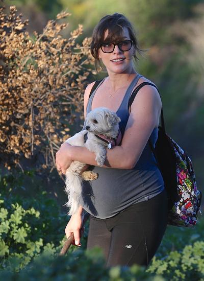 Беременная Милла Йовович, фото 2015