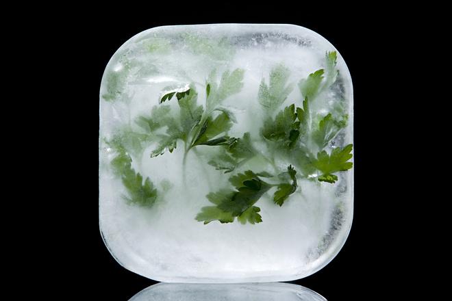 как заморозить петрушку в морозилке