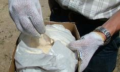 В России с начала года конфисковано более 30 тонн наркотиков