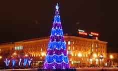 К Новому году в Волгограде появится новая елка