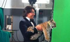 Андрей Малахов приручил тигрицу