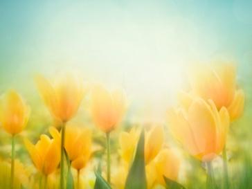 Весна придет с Пасхой
