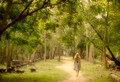 Хорхе Букай: 20 шагов на пути к себе
