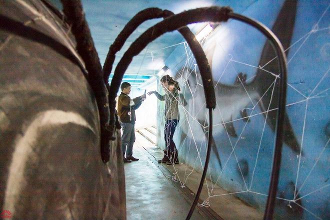 в Перми паук пугал прохожих