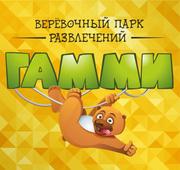 Сеть верёвочных парков развлечений «ГАММИ»