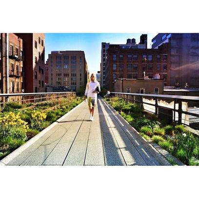 Парк High Line в Нью-Йорке