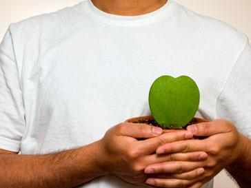 сердце, наука, здоровье