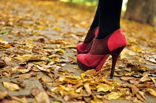 Выбор осенней обуви