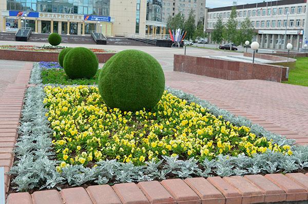 Сургут – город цветов!