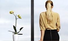 Советы эксперта: как ухаживать за комнатными растениями