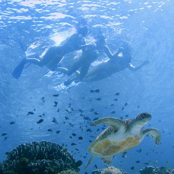 Морские соли не хуже рук массажиста «разбивают» целлюлит и улучшают кровообращение.