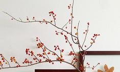 Осенний декор: украшаем свой дом