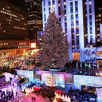 В Нью-Йорке елка по традиции (с 1931 года) устанавливается перед Рокфеллер-центром. Ее гирлянды состоят из 30 тысяч энергосберегающих лампочек.