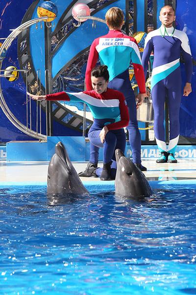 Анастасия Заворотнюк с дельфинами 2015 фото