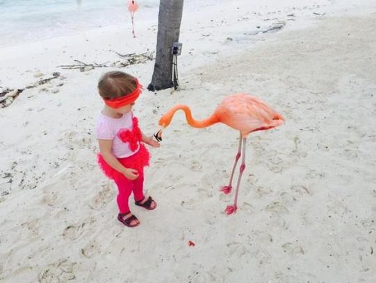 Варя, дочка Светланы, общается с фламинго