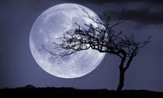 Где в Волгограде увидеть лунное затмение