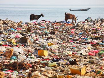 Пластиковые бутылки станут основой искусственного острова