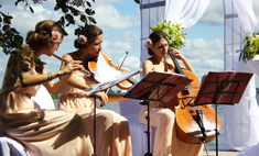 Идеи для свадебной регистрации: музыка от фей
