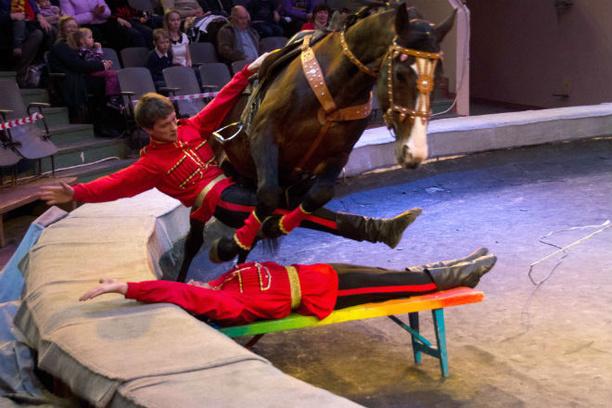 Уфимский цирк открывает новый сезон