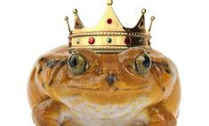 Организаторы «Мисс Россия-2010» представили новую корону победительницы