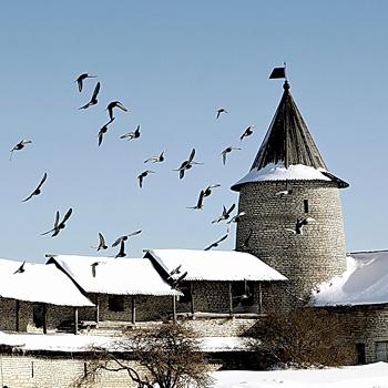 Впервые Псков упоминается в летописях 903 года как город, откуда привезли в Киев Ольгу, невесту для князя Игоря.