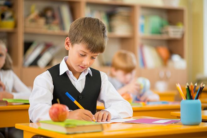 Рабочие тетради в школе: нужно ли их покупать?