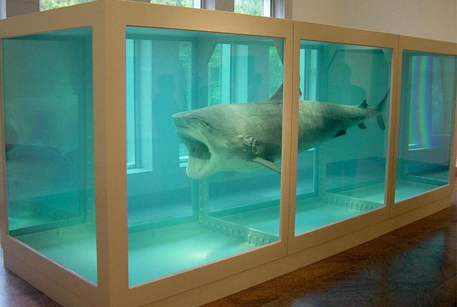 «Невозможность принятия смерти в сознании живущих». Херст купил животное у австралийского рыбака за $9000. Уже в 1992 году акула начала разлагаться прямо в галерее. Шкуру пришлось снять и натянуть на пластиковый каркас.