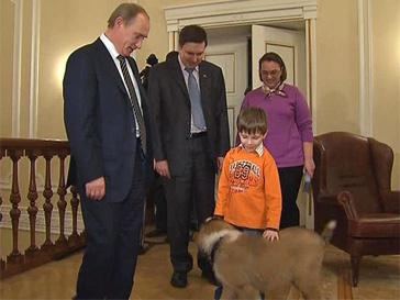 собака, щенок, Путин